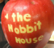 THE GREEN COLLECTIVE | The Hobbit House