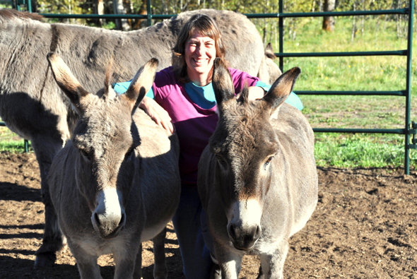 Ashley and her daughter Clover are rescued Sicilian miniature donkeys, lovingly cared for by Beatrix Linde and her husband Howard. Photo: LeRae Haynes