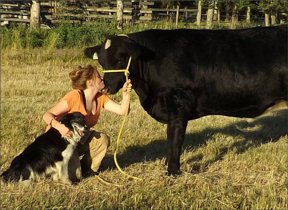 Skye Forcier spending time with her dog and 4-H Steer at home on the ranch in Miocene, BC.  Photo: Troy Forcier
