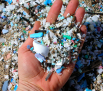 SCIENCE | STEWARDSHIP | I SEA Change: 5 Gyres Ocean Plastic Research