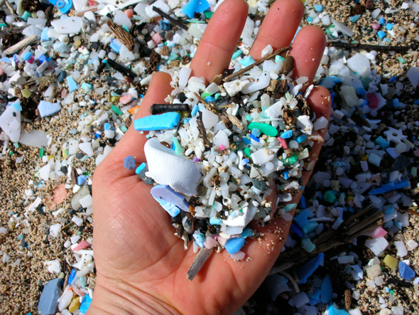 Microplastic particles on a beach. Photo courtesy of 5 Gyres
