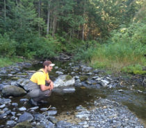 NEWS | SCIENCE | Celebrating BC Rivers Day in light of Mt. Polley Mine Breach
