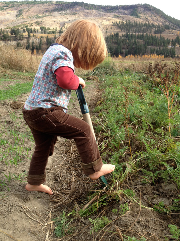 It's never too early to get busy digging on the farm. Photo: Stephanie Bird