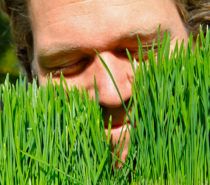 NATURAL HEALTH | Strength in Superfoods: Wheatgrass Love