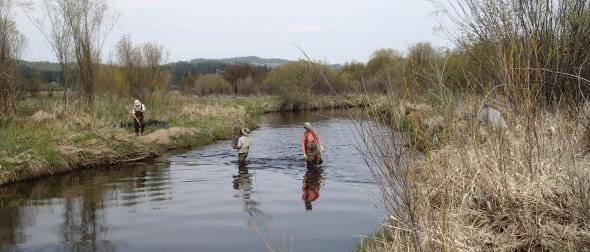 Field workers surveying wetland habitat. Photo: Francisco Martins/Flickr