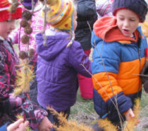 CHILDREN | Nature Kindergarten Coming to the Cariboo