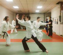 FEATURED GREEN BUSINESS | Aikido Studio and Aizenkan Martial Arts