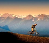 ECO TOURISM | The Cariboo Mountain Bike Consortium – An Introduction