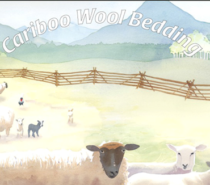 Green Business Feature | Keeping Warm with Cariboo Wool Bedding
