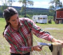ARTS & EDUCATION | Sustainable Ranching—Learning Applied Skills and Diversification