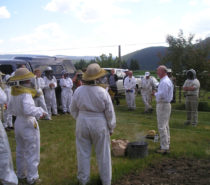Stewardship | Education & Action are Key to Successful Beekeeping