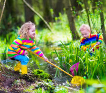 Local Outdoor Education Options Helping Children Thrive