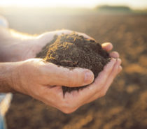 Agriculture Part 3: Realigning the culture of modern farming