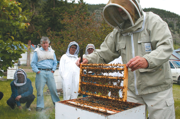 Bee Master John Gates lifts frame with bars of grafted queen bee cells from a hive as students look on. Photo: Diane Dunaway