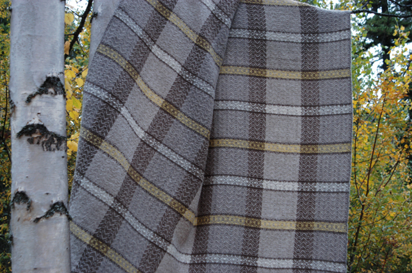 Shetland wool blanket on a birch tree behind Jane's house. Photos: Jane Perry