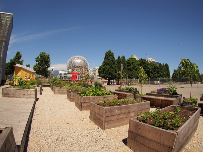 Urban Community Garden located in the heart of downtown Vancouver, BC. Photo: www.pxhere.com/en/photo/281888