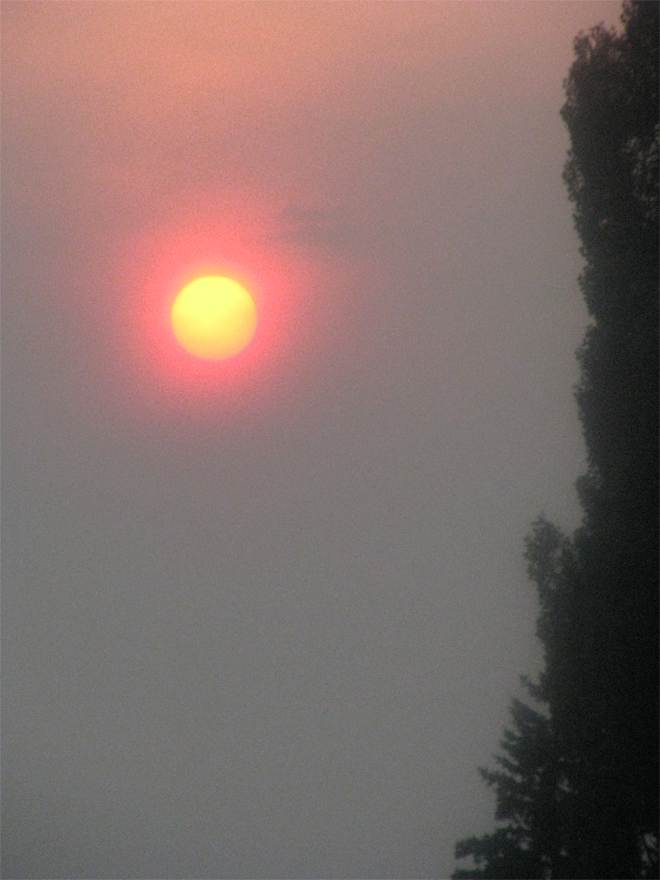 The view of the red sun out my window in Williams Lake before our evacuation order. Photo: Lisa Bland