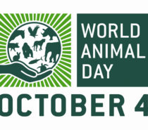 World Animal Day: Caring for all Earth's Creatures