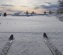 Let It Snow – Bring on the cross-country ski season