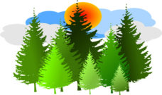 A Critique of Forestry for the New NDP Government