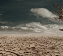Science Matters | David Suzuki |  Will the world act on climate change before it's too late?