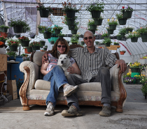 Green Business: Frank's Plants and Produce: Seeking sustainability one seedling at a time