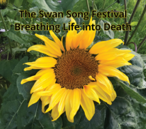 The Swan Song Festival – Breathing Life into Death