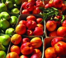 Farmers' Markets in the Cariboo in 2020